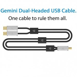 IFI AUDIO GEMINI DUAL-HEADED CABLE